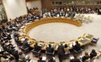 Conseil de sécurité de l'ONU : Tchad et Nigéria parmi les membres non-permanents
