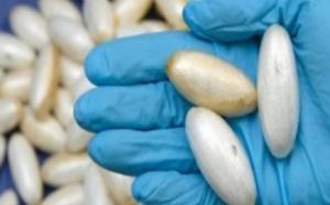 Trafic de cocaïne dans les boîtes de nuit aux Almadies : un Sénégalais et trois Nigérians arrêtés