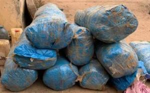Diouloulou: 237 kilogrammes de chanvre saisis et deux trafiquants arrêtés par la gendarmerie