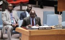Soudan du Sud: l'ONU autorise l'envoi de 4 000 casques bleus supplémentaires
