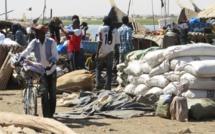 Mali: grève des transporteurs routiers pour dénoncer l'insécurité dans le Nord