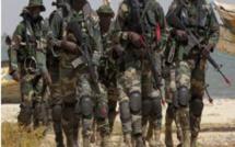 Préparatifs de l'assaut: le maillage de la Gambie par les forces de la Cedeao