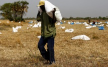 Famine au Yémen, Soudan du Sud, Nigeria et Somalie: l'appel à l'aide de l'ONU