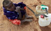 Somalie: 26 personnes mortes de la faim en deux jours dans le Jubaland