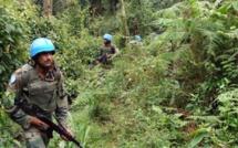 RDC: la société civile du Lubero appelle à neutraliser le chef de guerre Guidon