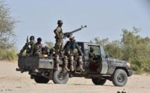 Niger: les autorités travaillent à la réinsertion des repentis de Boko Haram