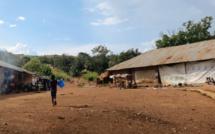Crise dans le Pool: les propositions de l'UPADS pour les couloirs humanitaires
