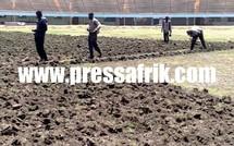 (Photos) 16 Millions de FCFA pour la réfection de la pelouse du stade Léopold Sédar Senghor.