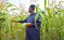 Macky mise sur l'entrepreneuriat des femmes et des jeunes et oublie les agriculteurs