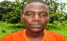 Coupe de bois sans autorisation: Le maire de Oulampane libéré