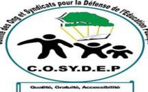 """""""Nos Vacances pour l'Ecole"""" : Panel de la COSYDEP sur les résultats des examens 2018, ce vendredi"""