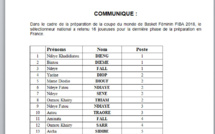 """Coupe du monde de basket féminin : Voici la liste des 16 """"Lionnes"""" retenues par Cheikh Sarr"""