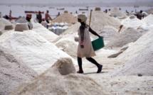 """Alerte rouge sur le sel sénégalais : """"c'est un mauvais sel qui contient du plastique et..."""""""