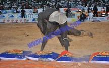 Reportage Photos VIDEO lutte - Baye Mandione enfonce Moussa Dioum