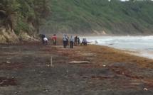 Malika : Un fœtus a été retrouvé sous la plage