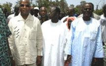 Visite du mouvement M23 à Touba : Niasse, Tanor et Bathily manquent à l'appel