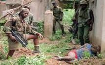 Frontière sénégalo-Bissau guinéenne: 50 éléments armés du MFDC  s'acharnent sur les villageois