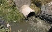 Alerte : 300.000 dakarois en danger de mort à cause du canal de collecte des eaux usées