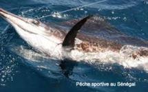 L'équipe nationale de pêche sportive rate le podium en Italie