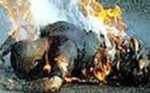 Yeumbeul : Ne pouvant plus supporter la rupture avec sa copine, il s'immole par le feu