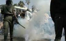 Affrontements entre socialistes et libéraux à Tambacounda : Les nervis se disent victimes de manipulation