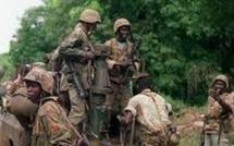 Diagnon : 03 rebelles arrêtés par l'armée