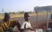 """En plus de l'affaire Malick Noel Seck, Tambacounda au pire de ses jours avec la naissance de """"Tambacounda va mal"""""""