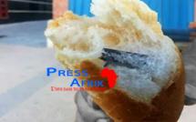 Université Gaston Berger de Saint-Louis: des morceaux de lame découverts dans le pain servi aux étudiants