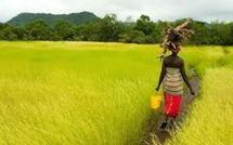 Mbour : Le député Amadou Diarra pour l'accès des femmes au foncier