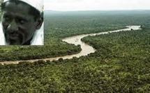Casamance-Dernières attaques armées : Salif Sadio accusé de commanditaire par le MFDC