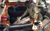 Le Cartel de la drogue voulait sortir les 238 kg de cocaïne saisie au port de Dakar