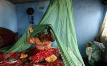 Congo-Brazzaville: retour du financement pour la lutte contre le paludisme