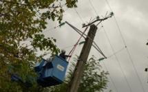 Drame à Tambacounda: une fillette de 12 ans électrocutée par la ligne moins tension (MT) de la Senelec