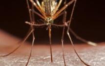 Lancement du programme de vaccination contre le paludisme au Kenya
