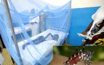La dengue refait surface ! Un cas signalé à Kaolack