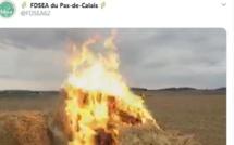En colère contre la «stigmatisation», les agriculteurs allument les feux