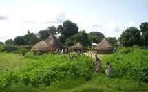 Casamance salue l'initiative de Salif Sadio à dialoguer avec le gouvernement