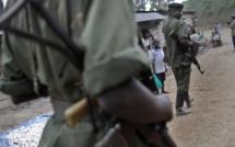 RDC: les rebelles FDLR livrent leur propre version de la mort de leur chef