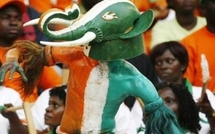 """VIDEOS CAN 2012 - Côte d'ivoire: l'Eléphant nommé """"CAN"""": les ivoiriens fêtent déjà la victoire"""