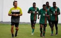 Hervé Renard, champion 2012 : Sollicité au Sénégal, il préfère poursuivre avec la Zambie
