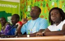 Pêche :  Greenpeace s'inquiète de nouvelles informations confirmant le règne de l'impunité dans le traitement des infractions