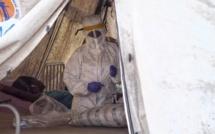 Nigeria: l'endémie de fièvre de Lassa est un problème de santé publique majeur
