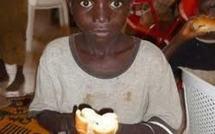 Lutte contre la faim: 06 pays reçoivent 177 millions de dollars de dons, dont 40 millions pour le Sénégal