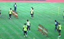 Equipe nationale : Koto invite les lions à comprendre que le Sénégal n'a encore rien gagné