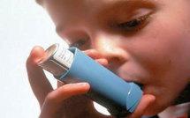 Santé : Création d'une Société africaine d'allergologie