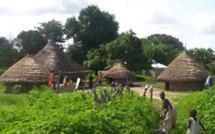 Diabir: A la découverte du village qui abritait les réunions du MFDC