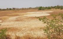 Gérer les ressources naturelles : la technique de la «mise en défens»
