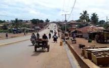 Guinée: préserver la biodiversité ne peut pas être la priorité