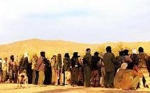 Nord du Mali : les islamistes du Mujao ont pris Gao, le MNLA déterminé à poursuivre le combat