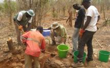 Scandale à Sabodala : 11 tonnes d'or emportés par l'ancien régime (révélation)